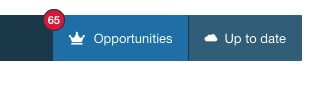 Opportunities Badge on Vik Channel Manager